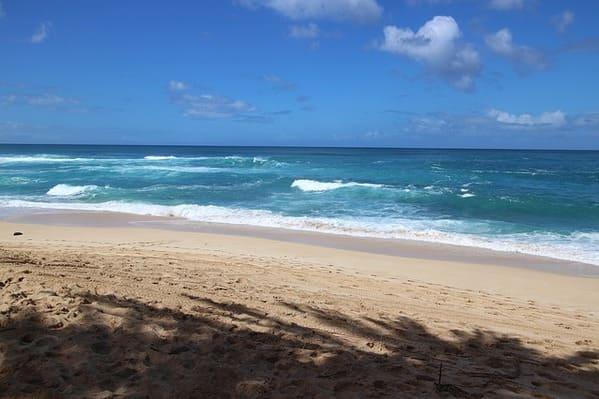 ノースショアの白砂のビーチ